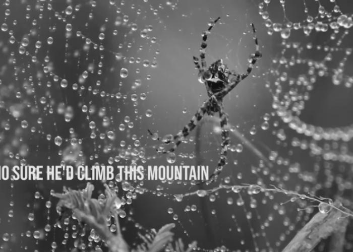 Arrierians - Spider Web (Lyric Video)